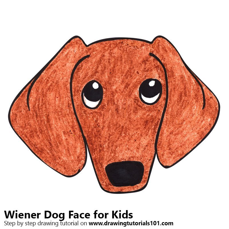 Learn How To Draw A Wiener Dog Face For Kids Animal Faces For Kids