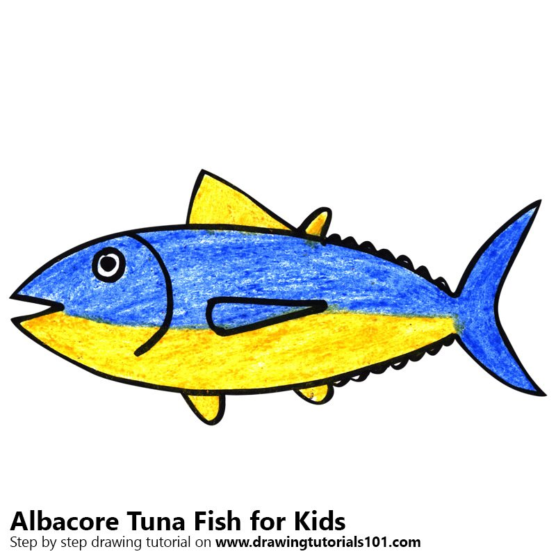 Learn How To Draw An Albcore Tuna Fish For Kids Animals For Kids