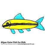 How to Draw a Algae-Eater Fish for Kids