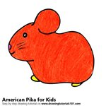 How to Draw an American Pika for Kids