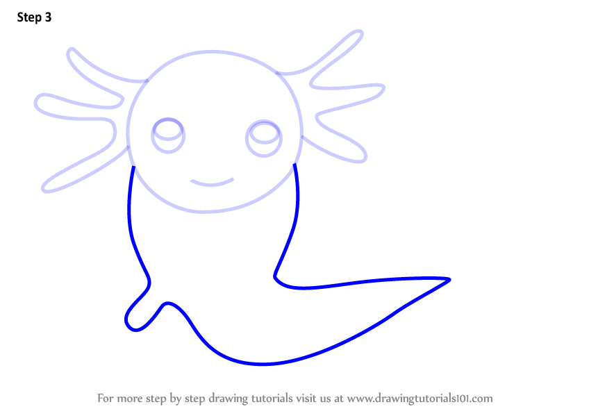 Learn How To Draw An Axolotl For Kids (Animals For Kids