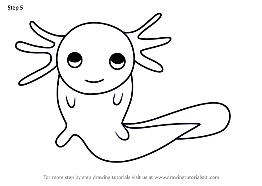 axolotl coloring pages - photo#16