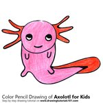 How to Draw an Axolotl for Kids