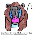How to Draw a Baboon for Kids