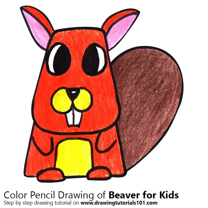 Beaver for Kids Color Pencil Drawing