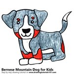 How to Draw a Bernese Mountain Dog for Kids