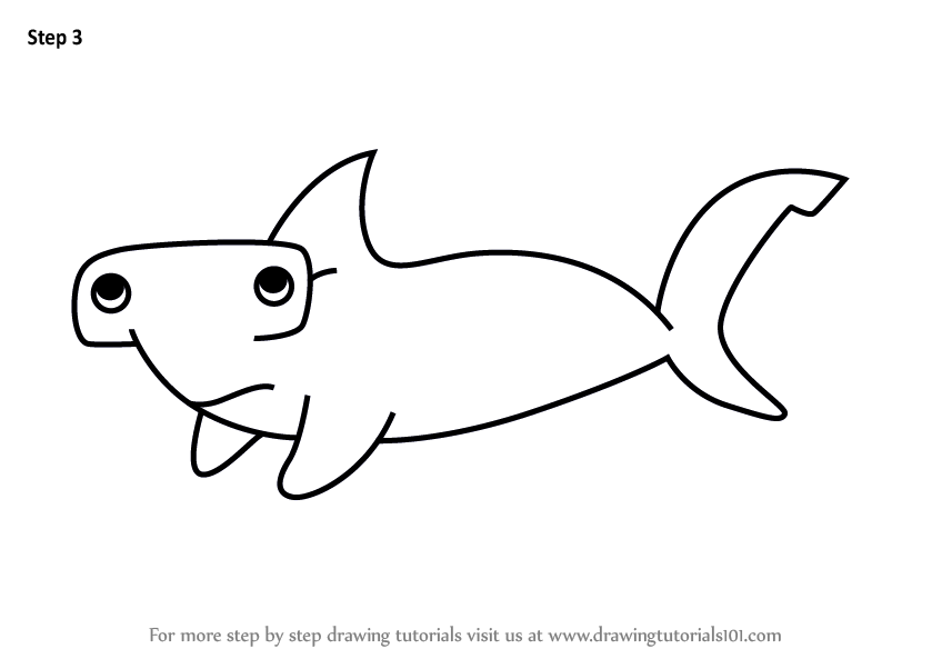 Learn How To Draw A Bonnethead Shark For Kids Animals For