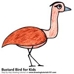 How to Draw a Bustard Bird for Kids