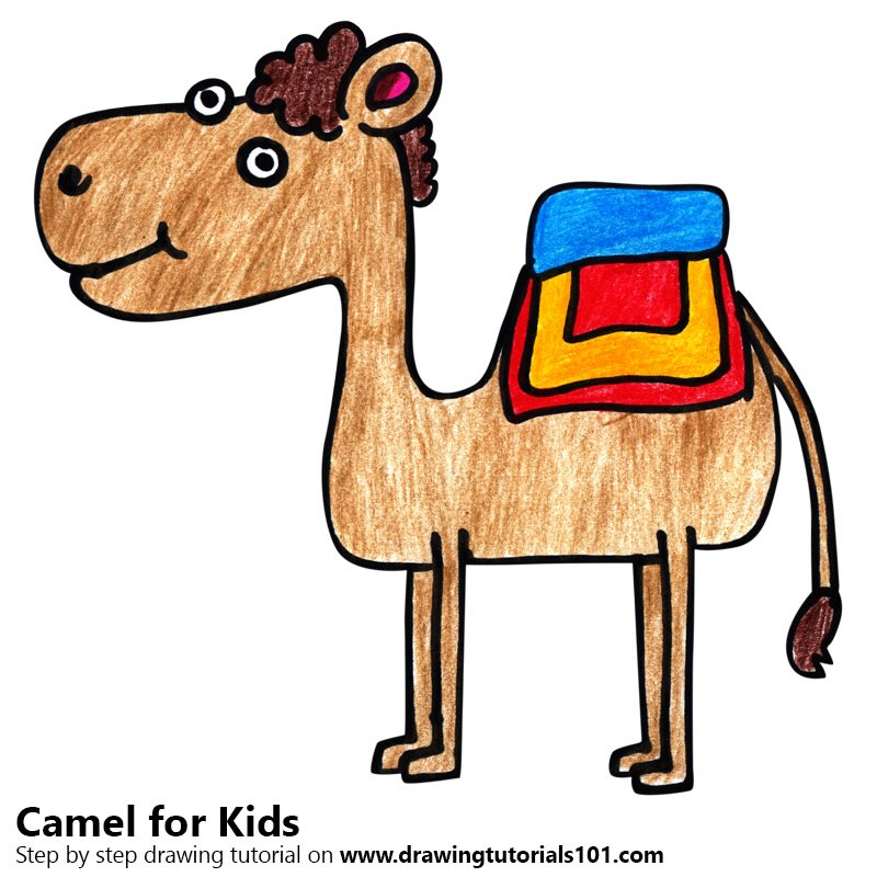 Learn How to Draw a Camel for Kids (Animals for Kids) Step