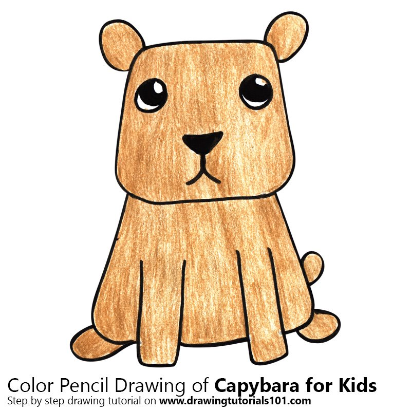 Capybara for Kids Color Pencil Drawing