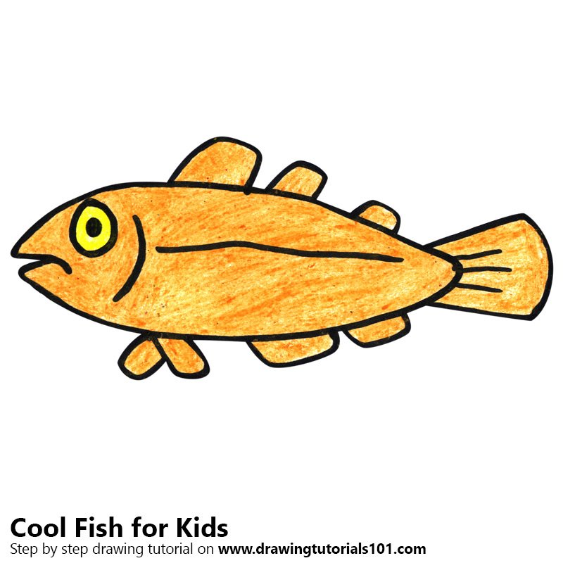 learn how to draw a cool fish for kids animals for kids step by