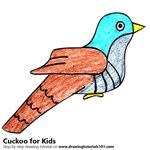 How to Draw a Cuckoo for Kids