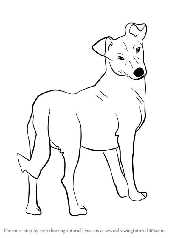 Learn how to draw a cute dog animals for kids step by step drawing tutorials