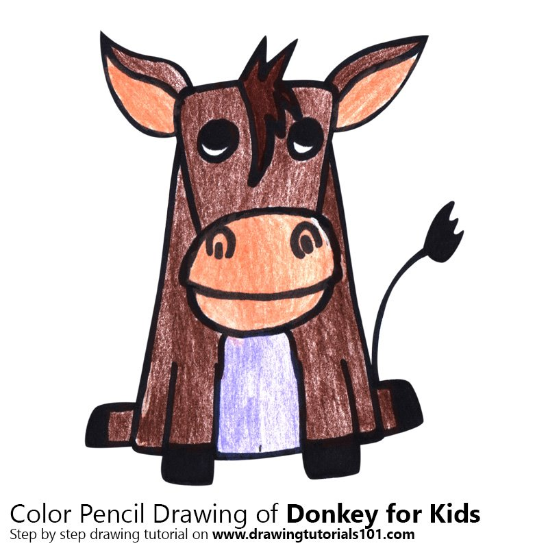 Donkey for Kids Color Pencil Drawing