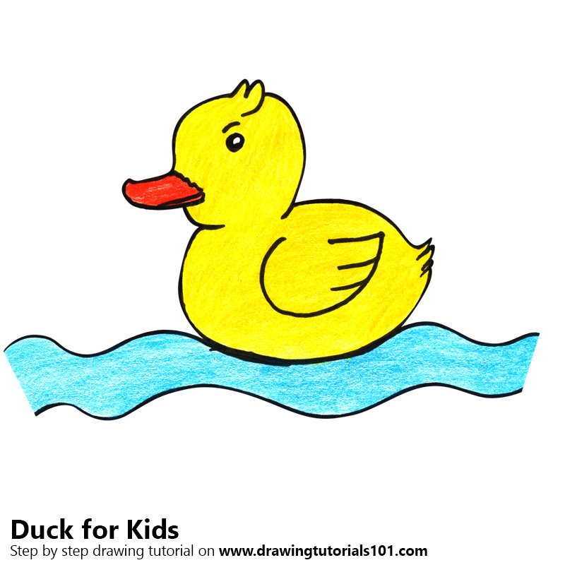 Learn How To Draw A Duck For Kids Animals For Kids Step By Step