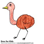 How to Draw an Emu for Kids