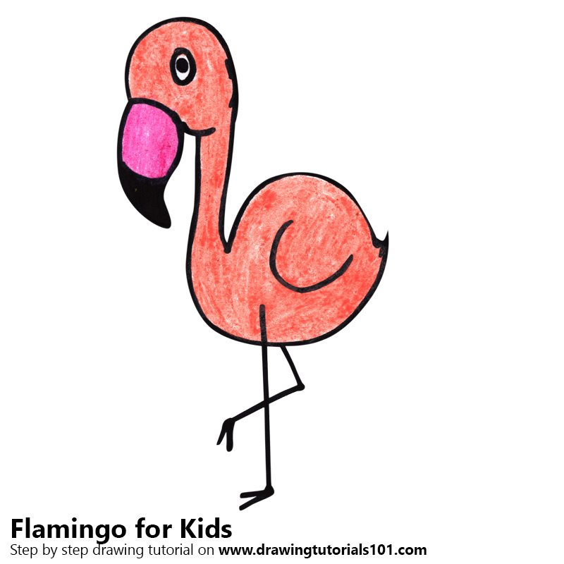 Learn How To Draw A Flamingo For Kids Animals For Kids Step By