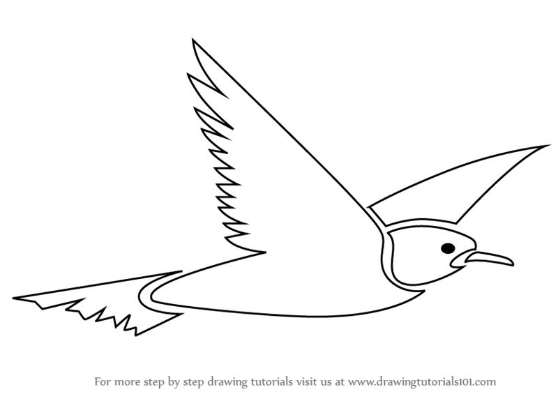 How to draw a flying bird for kids