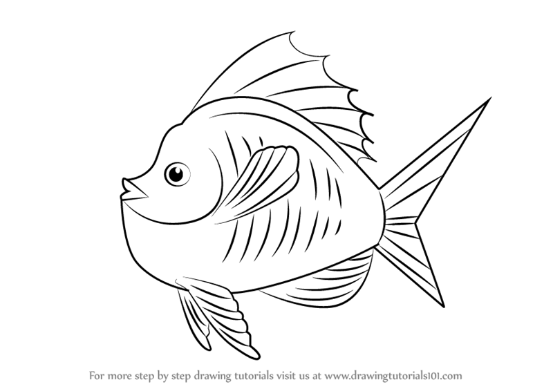 learn how to draw goldfish in tank animals for kids step by step drawing tutorials