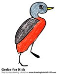 How to Draw a Grebe for Kids