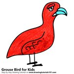 How to Draw a Grouse Bird for Kids