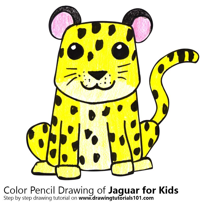Learn How To Draw A Jaguar For Kids Animals For Kids Step By
