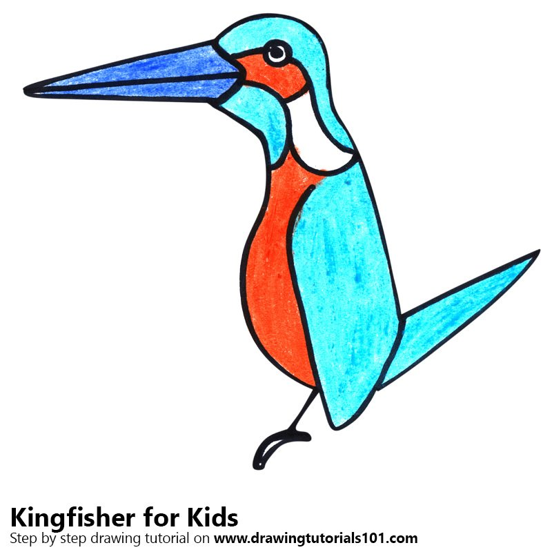 Learn How To Draw A Kingfisher For Kids Animals For Kids Step By
