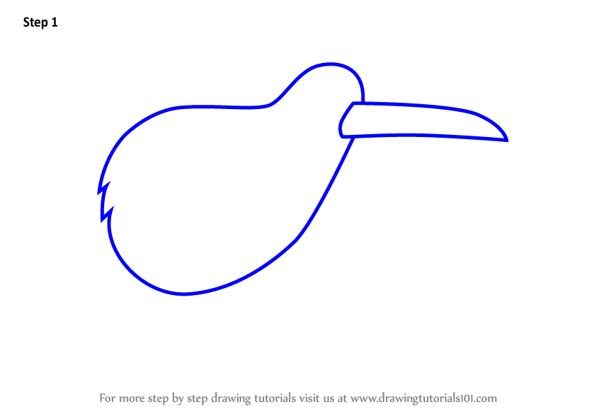 Learn How To Draw A Kiwi Bird For Kids Animals For Kids Step By