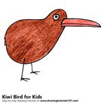 How to Draw a Kiwi Bird for Kids