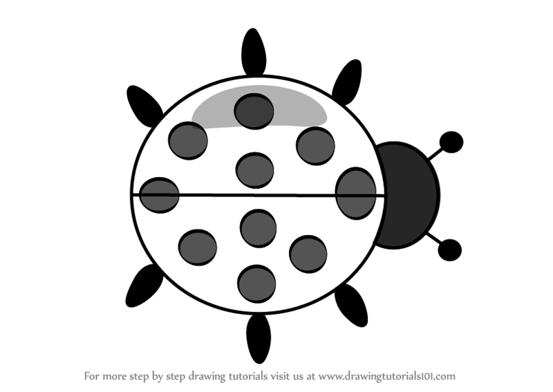 Great How To Draw Ladybug Cartoon
