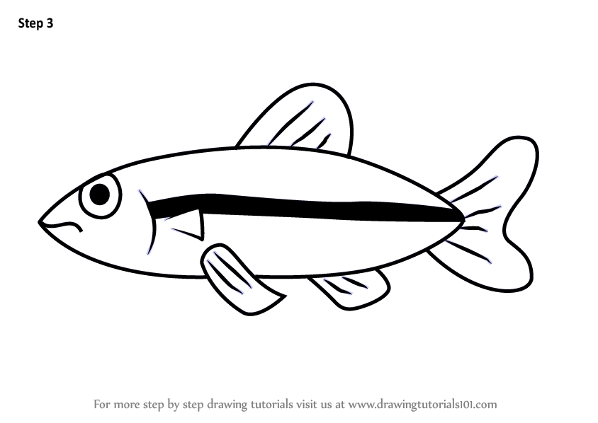 Learn How To Draw A Minnow Fish For Kids Animals For Kids Step By Step Drawing Tutorials