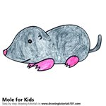 How to Draw a Mole for Kids