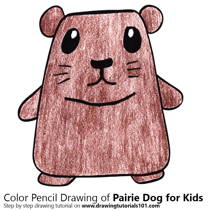 Pairie Dog for Kids Color Pencil Drawing