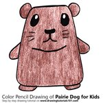 How to Draw a Pairie Dog for Kids