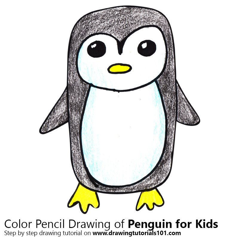 Penguin Drawings For Kids Learn How to Dr...
