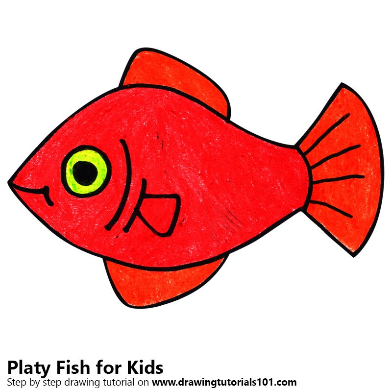 Learn How To Draw A Platy Fish For Kids Animals For Kids Step By