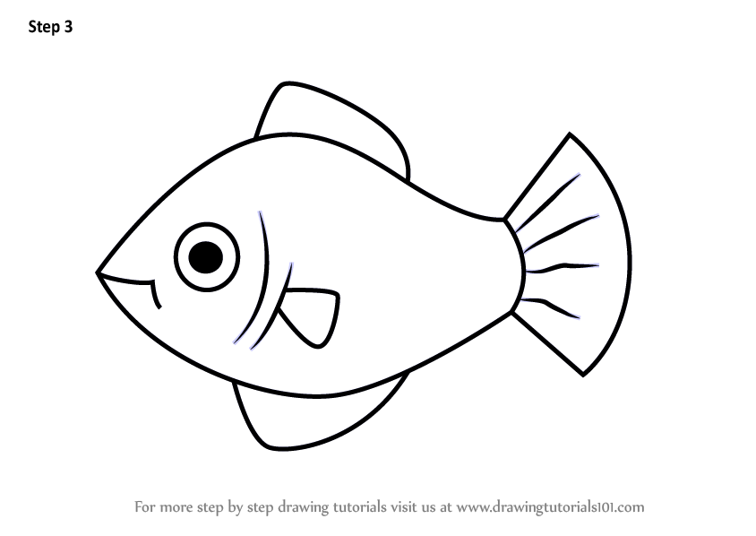 step by step how to draw a platy fish for kids