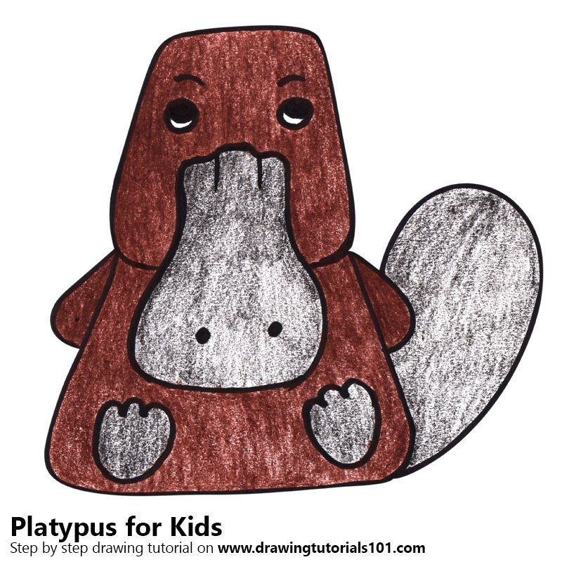 Platypus for Kids Color Pencil Drawing