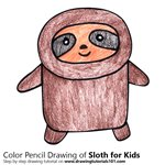 How to Draw a Sloth for Kids