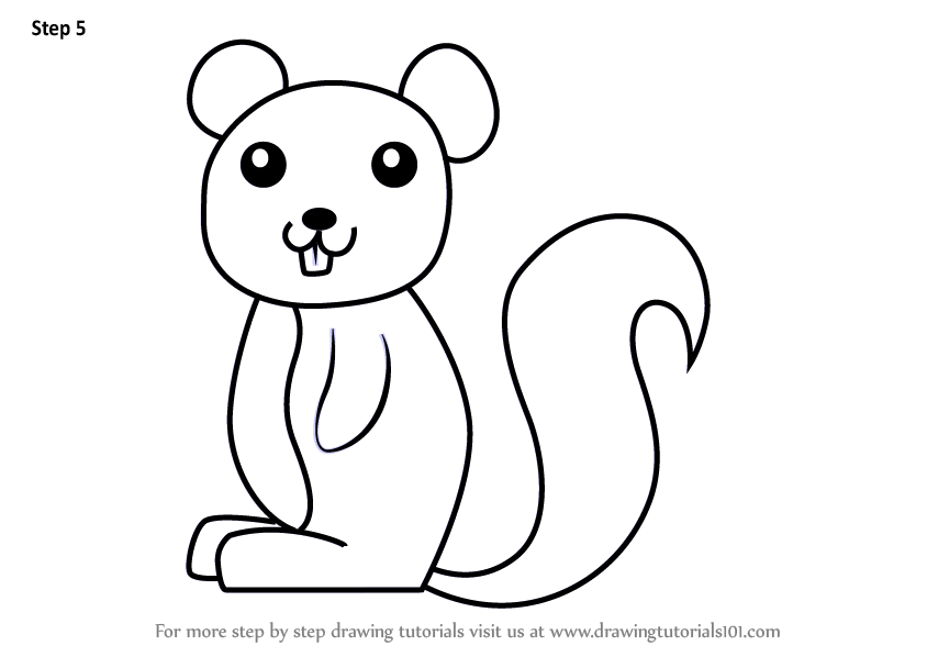 learn how to draw a squirrel for kids animals for kids step by