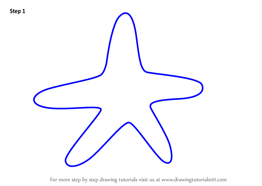 Learn How to Draw a Starfish for Kids (Animals for Kids ...
