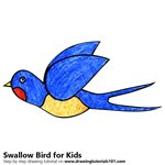 How to Draw a Swallow Bird for Kids
