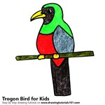How to Draw a Trogon Bird for Kids