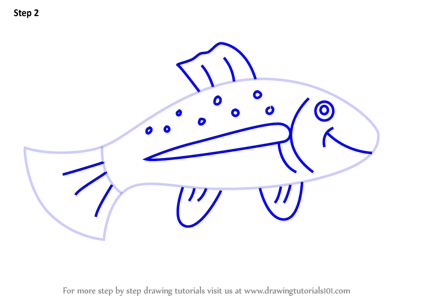 Learn How To Draw A Trout Fish For Kids Animals For Kids