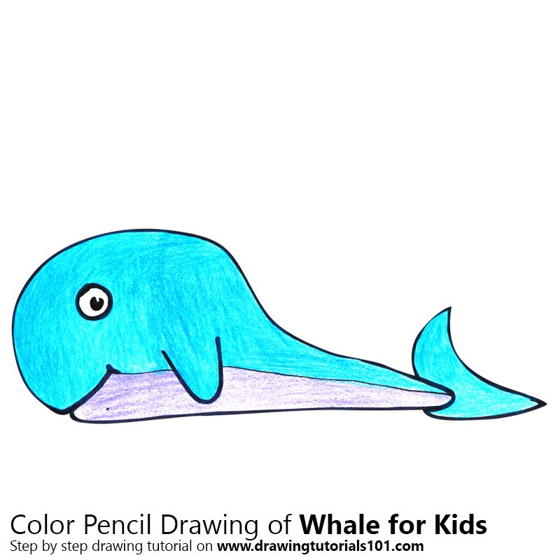 Whale for Kids Color Pencil Drawing