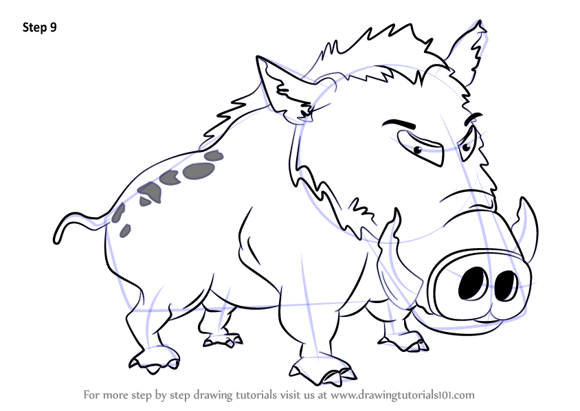 How to draw wild animals for kids