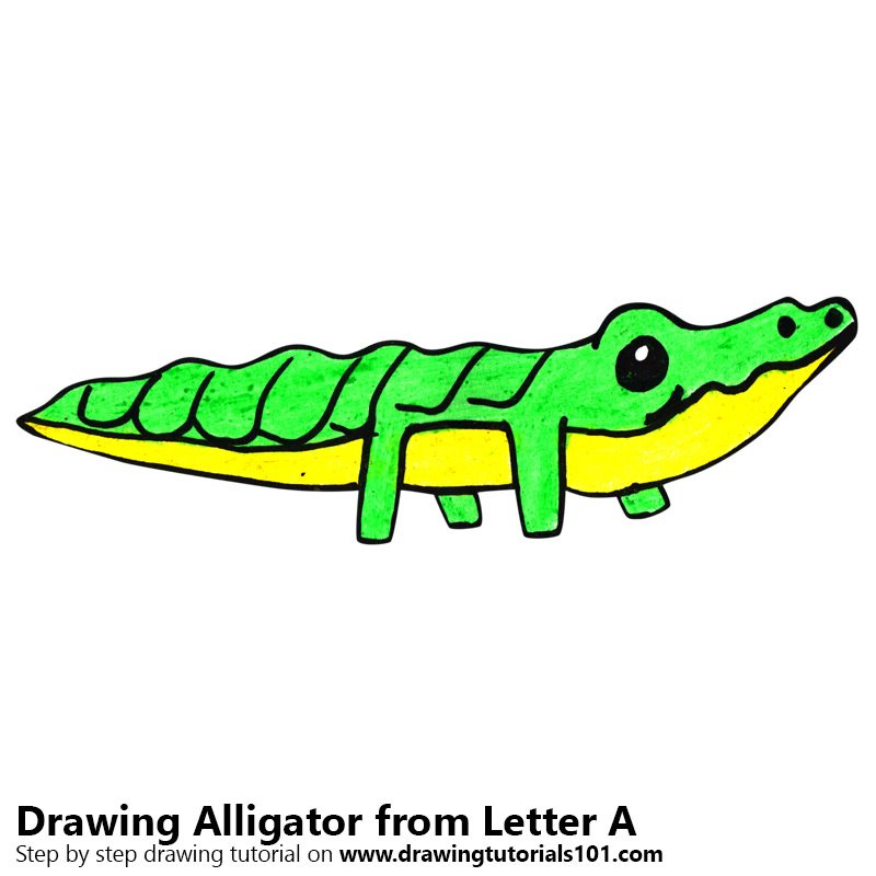 Alligator from Letter A Color Pencil Drawing