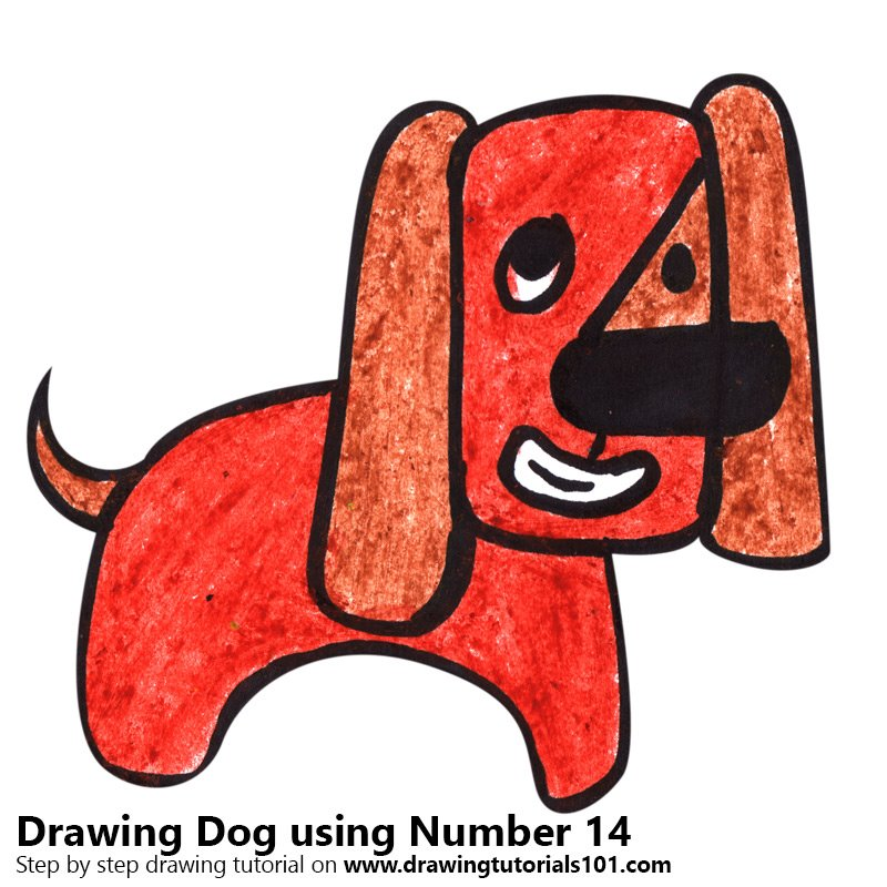 Dog using Number 14 Color Pencil Drawing