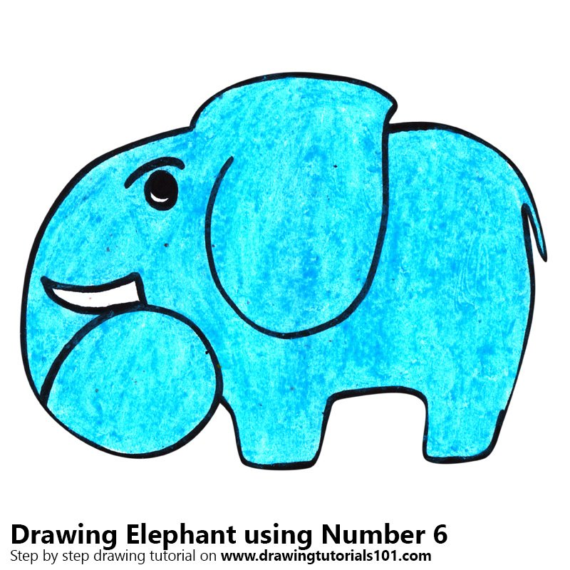 Elephant using Number 6 Color Pencil Drawing