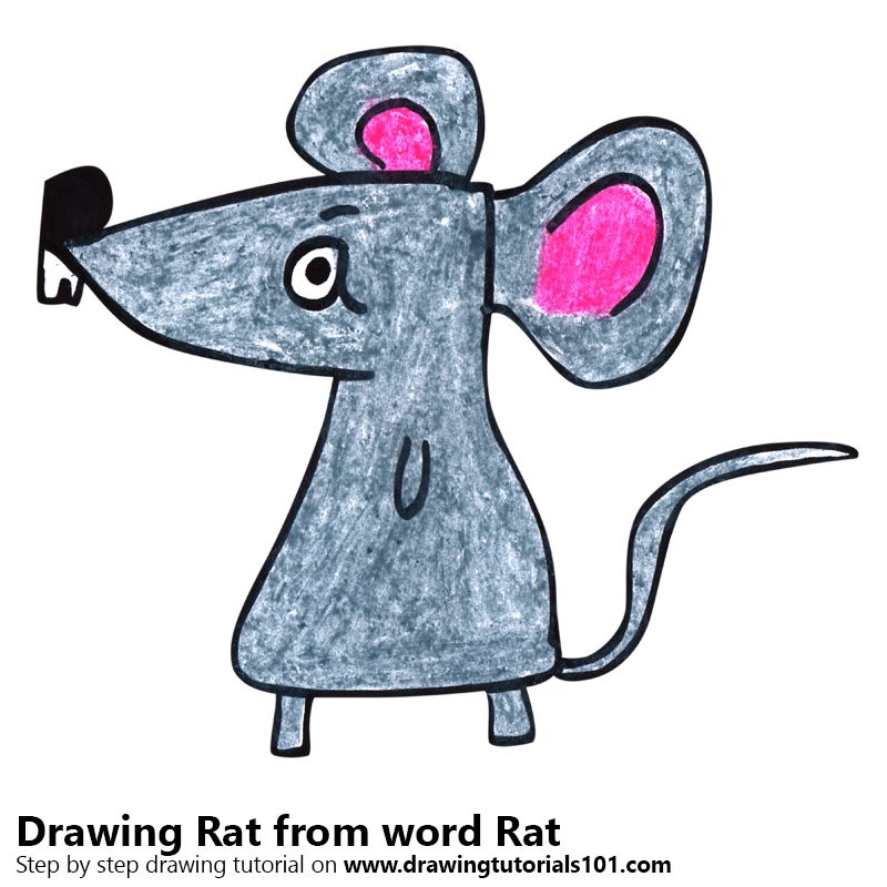 Rat from word Rat Color Pencil Drawing